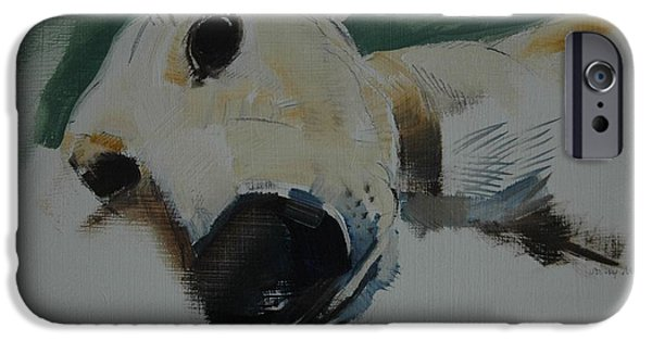 Hound iPhone Cases - Greyhound, 2009 Oil On Paper iPhone Case by Sally Muir