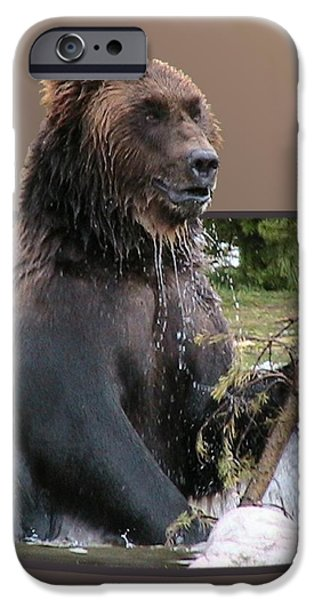 Grizzly Bear 6 Out of Bounds iPhone Case by Thomas Woolworth