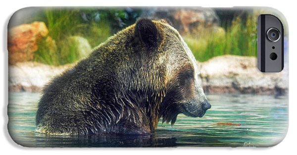 Walking Beat iPhone Cases - Grizzly Bear Enjoying a Dip in the Water Fade to White Version iPhone Case by Jim Fitzpatrick