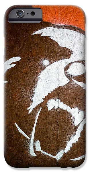 Grizzly Bear Graffiti iPhone Case by Edward Fielding