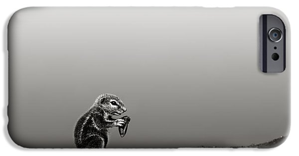 Ground iPhone Cases - Ground squirrel iPhone Case by Johan Swanepoel