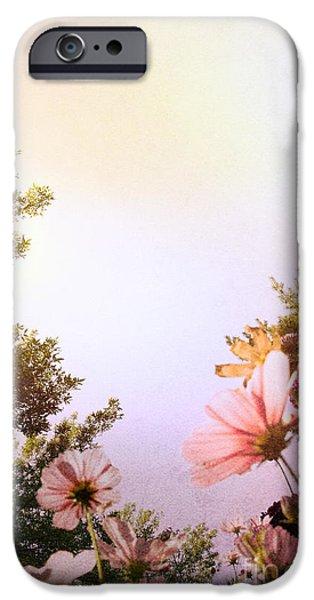 Ground View iPhone Case by Margie Hurwich