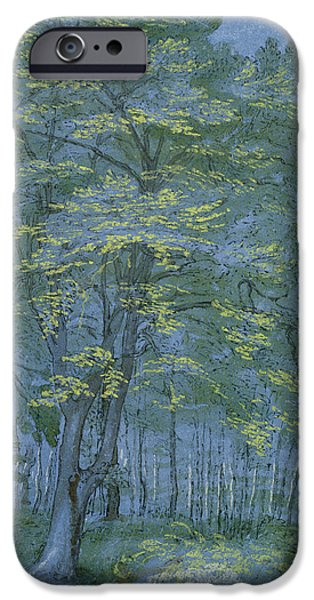 Landscapes Drawings iPhone Cases - Group of Trees in a Wood iPhone Case by Hendrik Goltzius