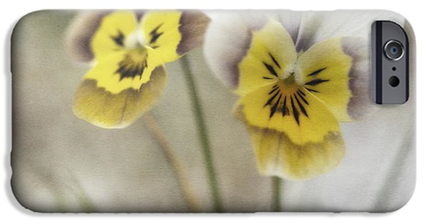 Pansy iPhone Cases - Growing Wild iPhone Case by Priska Wettstein