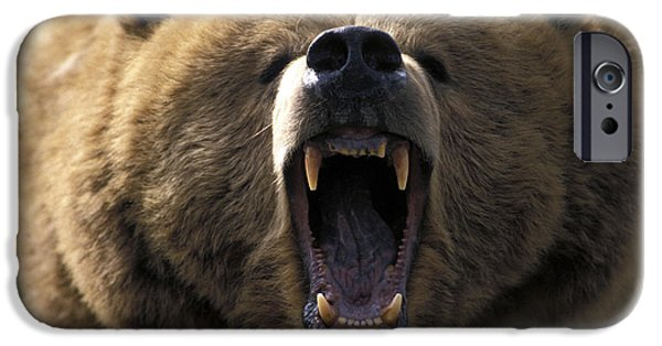 Growling iPhone Cases - Growling Grizzly Bear iPhone Case by Mark Newman