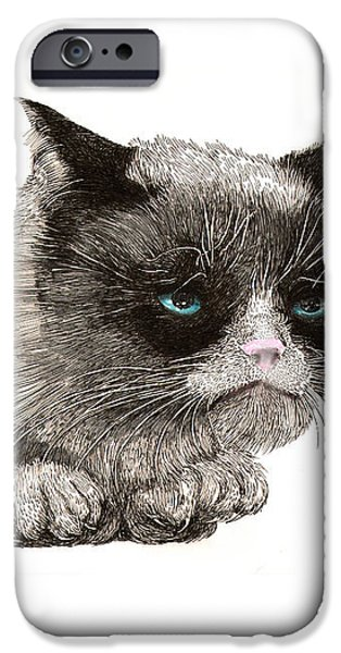 GRUMPY PUSSY CAT iPhone Case by Jack Pumphrey