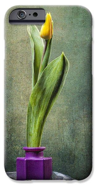 Grunge Yellow Tulip iPhone Case by Erik Brede
