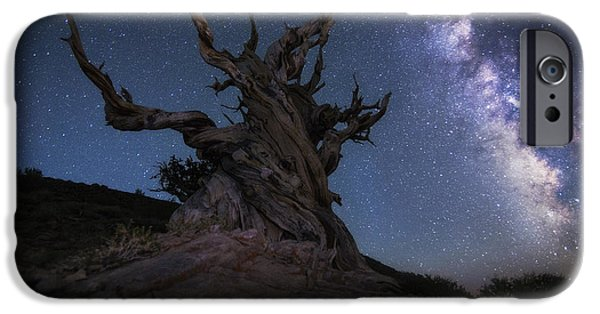 Pines iPhone Cases - Guardian of the Galaxy  iPhone Case by Peter Coskun