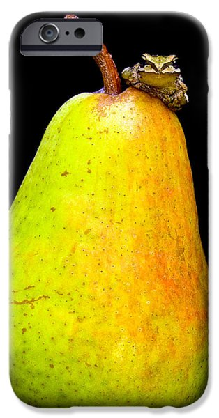 Anuran iPhone Cases - Guest A-pear-ance iPhone Case by Jean Noren