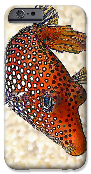 Meleagris iPhone Cases - Guinea Fowl Puffer Fish iPhone Case by Bill Caldwell -        ABeautifulSky Photography