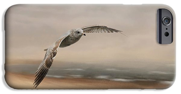 Sea Birds iPhone Cases - Gull At The Shore iPhone Case by Jai Johnson