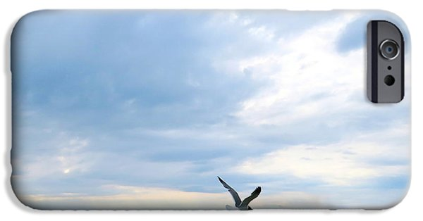 Recently Sold -  - Flying Seagull iPhone Cases - Gull in Flight  iPhone Case by Nancy Patterson