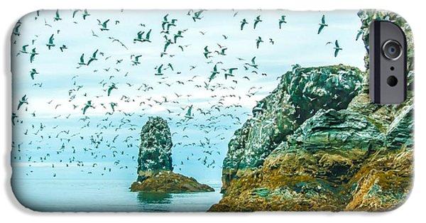 Sea Birds Digital Art iPhone Cases - Gull Island iPhone Case by Debra  Miller