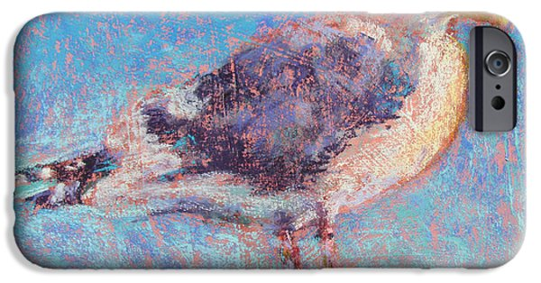 Seagull Pastels iPhone Cases - Gull iPhone Case by Julia Patterson