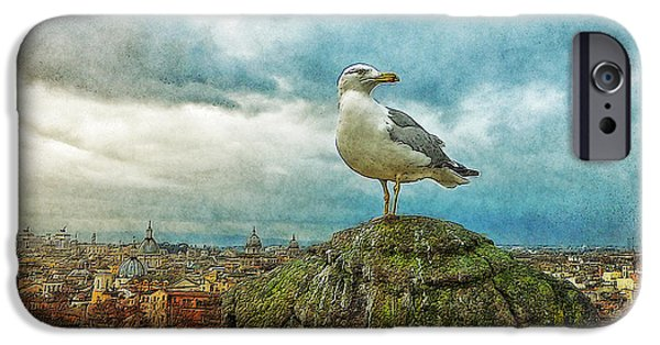 Merging iPhone Cases - Gull Over Rome iPhone Case by Jack Zulli