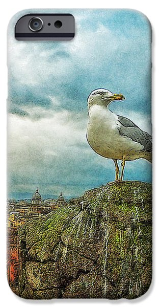 Gull Over Rome iPhone Case by Jack Zulli