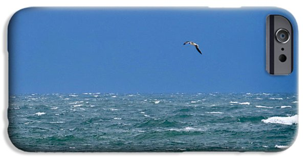 Recently Sold -  - Flying Seagull iPhone Cases - Gull Over The Ocean  iPhone Case by Nancy Patterson