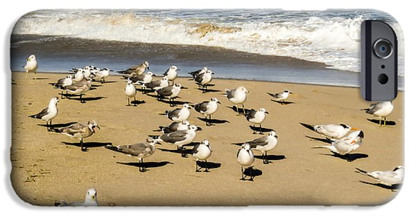 Recently Sold -  - Flying Seagull iPhone Cases - Gulls at the beach iPhone Case by Zina Stromberg