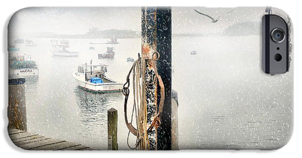 Recently Sold -  - Winter In Maine iPhone Cases - Guls Eye iPhone Case by Diana Angstadt