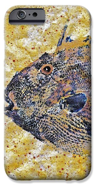 Sportfish Mixed Media iPhone Cases - Gyotaku - Triggerfish - Oldwench -  Diptych 1  iPhone Case by Jeffrey Canha