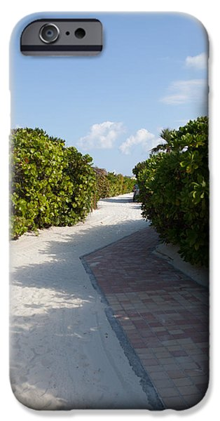Half Moon Cay iPhone Cases - Half Moon Cay Trail iPhone Case by Christopher McCartin