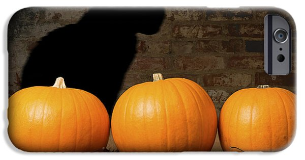 Creepy iPhone Cases - Halloween Pumpkins and The Witches Cat iPhone Case by Amanda And Christopher Elwell