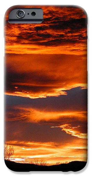 Halloween Sunset iPhone Case by Tim Nielsen