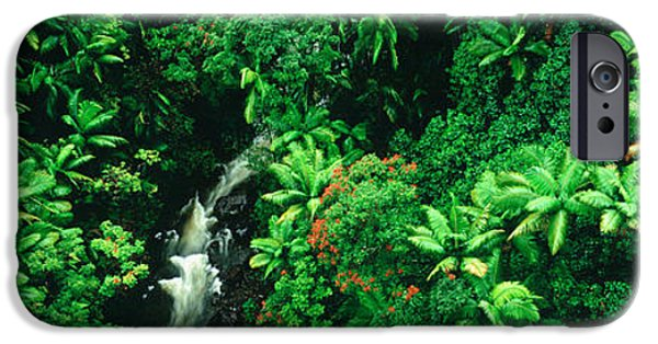 Raining iPhone Cases - Hamakua Coast, Hawaii, Hawaii, Usa iPhone Case by Panoramic Images