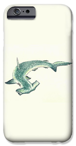 Hammerhead Shark iPhone Case by Michael Vigliotti