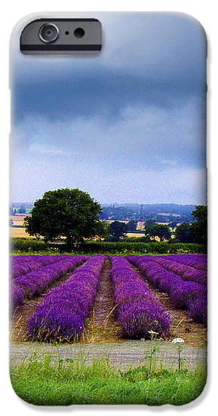 Hampshire Lavender Field iPhone Case by Terri  Waters