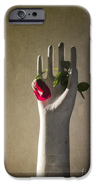 Hand Holding Rose iPhone Case by Terry Rowe