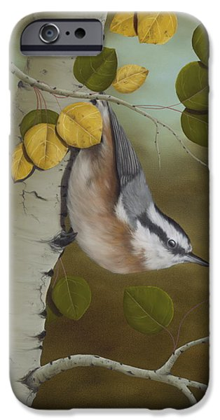 Paintings iPhone Cases - Hanging Around-Red Breasted Nuthatch iPhone Case by Rick Bainbridge