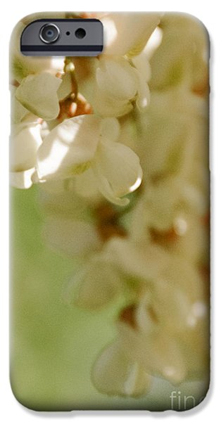 Floral Art iPhone Cases - Hanging Flowers 3 iPhone Case by Gloria Pasko