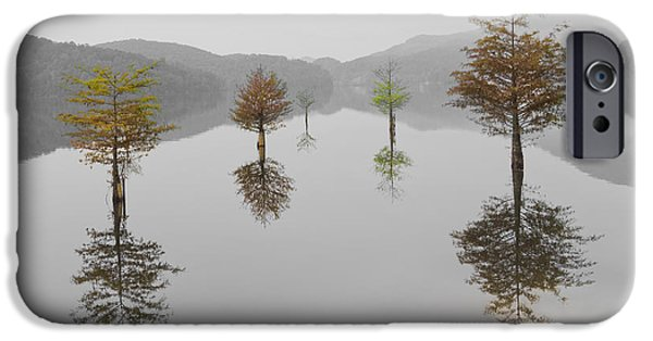 Autumn iPhone Cases - Hanging Garden iPhone Case by Debra and Dave Vanderlaan