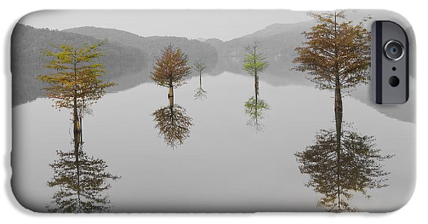 Smokey Mountains iPhone Cases - Hanging Garden iPhone Case by Debra and Dave Vanderlaan