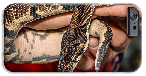 Burmese Python iPhone Cases - Hannibal iPhone Case by Steve Harrington