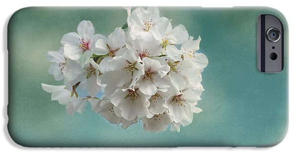 Cherry Blossoms iPhone Cases - Happiness Is iPhone Case by Kim Hojnacki