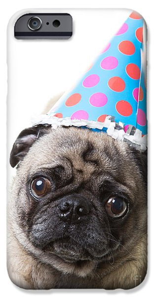 Animals Photos iPhone Cases - Happy Birthday Pug Card iPhone Case by Edward Fielding