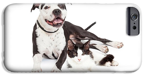 Mutt iPhone Cases - Happy Dog and Kitten Together iPhone Case by Susan  Schmitz