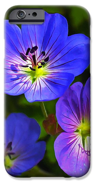 Plant iPhone Cases - Happy Face iPhone Case by Bill Caldwell -        ABeautifulSky Photography