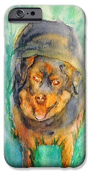 Dog In Landscape iPhone Cases - Happy Face iPhone Case by Diana Prout