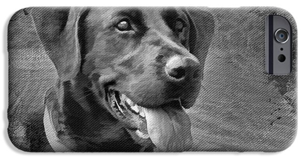 Dog Close-up Digital Art iPhone Cases - Happy Lab iPhone Case by Jayne Carney