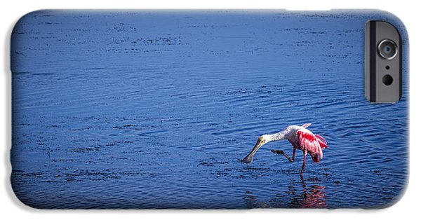 Spoonbill iPhone Cases - Happy Spoonbill iPhone Case by Marvin Spates