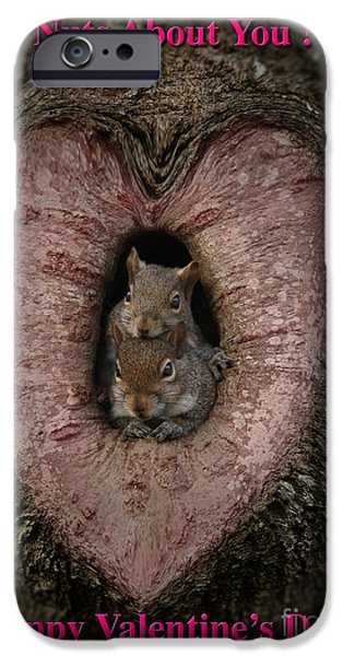 Hallmark iPhone Cases - Happy Valentine Squirrels iPhone Case by D Wallace