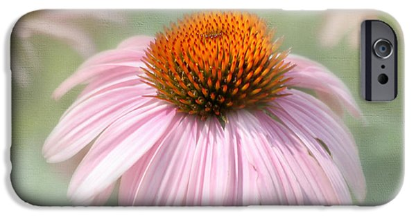 Cone Flowers iPhone Cases - Harmony  iPhone Case by Kim Hojnacki