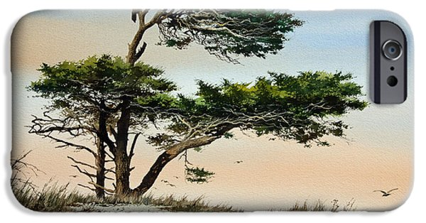 Windblown Paintings iPhone Cases - Harmony of Nature iPhone Case by James Williamson