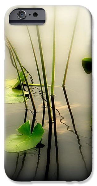 Harmony ZEN Photography II iPhone Case by Susanne Van Hulst
