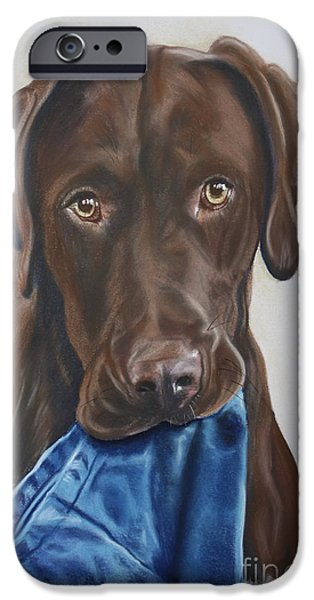 Chocolate Lab iPhone Cases - Hartwell iPhone Case by Linda Eversole