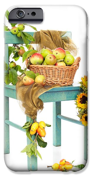 Cut-outs iPhone Cases - Harvest Fayre iPhone Case by Amanda And Christopher Elwell