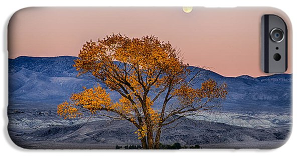 Moonlit Night Photographs iPhone Cases - Harvest Moon iPhone Case by Cat Connor